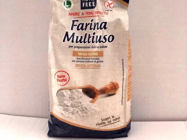 FARINA MIX S/GLUTINE KG 1 NUTRIFREE